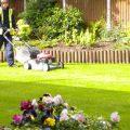 Precision Landscape Lawn Amp Garden Maintenance